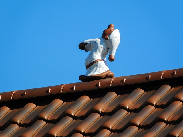 náměsíčník na střeše