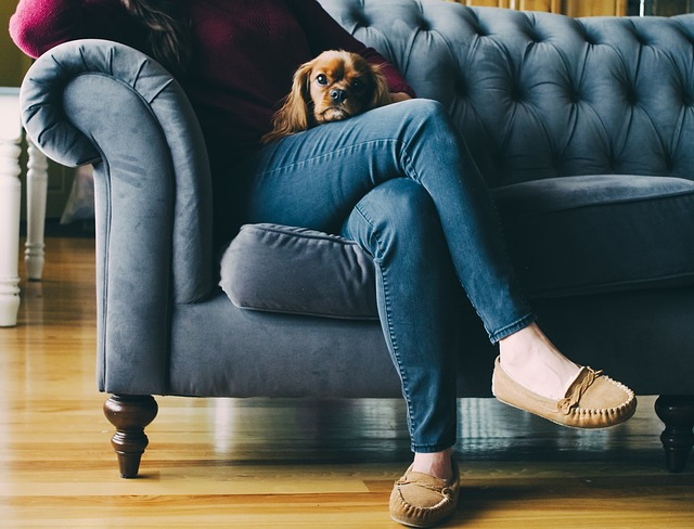 žena se psem na gauči
