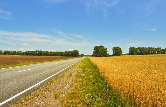 silnice mezi poli.jpg